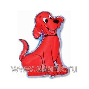 Собака Клиффорд