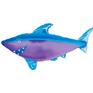 Акула AN